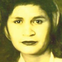 Elvira S. Figueroa